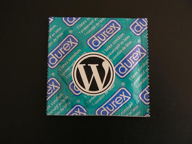 """Bild: """"WordPress Security"""" von  Nikolay Bachiyski. Lizenz: CC BY 2.0"""