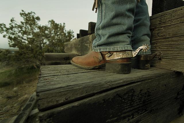 auf diesem bild sieht man cowboystiefel