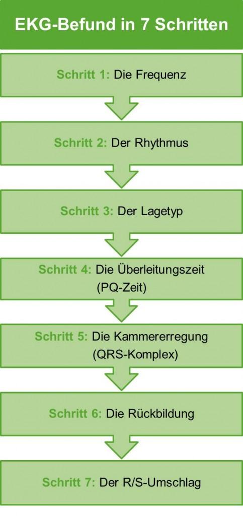 EKG in 7 Schritten