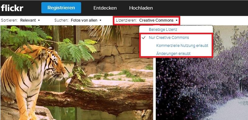 So filtern Sie nach CC-Inhalte bei der Flickr-Suche.