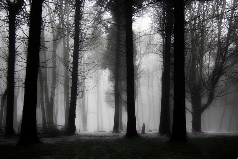 Bild von j.berger Quelle: Photocase
