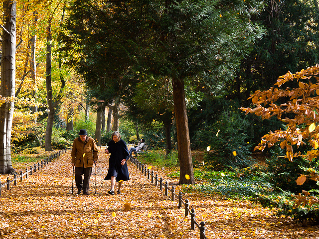 """Bild: """"Tiergarten Old Couple"""" von Francisco Osorio. Lizenz: CC BY 2.0"""