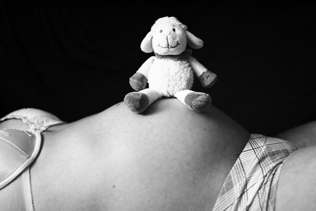 """Bild: """"B.W. Babybauch Kuscheltier"""" von Julia Großkreuz. Lizenz: CC BY ND 2.0"""