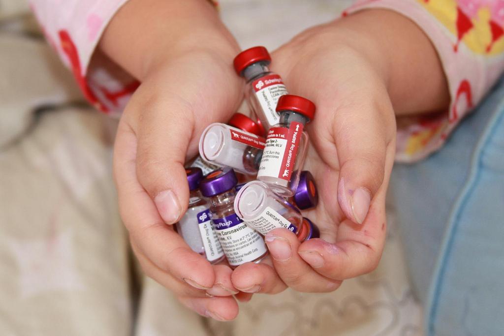 """Bild: """"Vacunas"""" von Carlos Reusser Monsalvez. Lizenz: CC BY 2.0"""