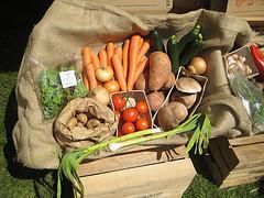 Organic Bio Gemüse