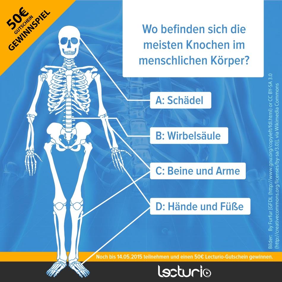 Gemütlich Anatomie Und Physiologie Schädel Quiz Fotos - Menschliche ...