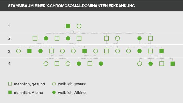 Stammbaum einer X-chromosomal dominanten erkrankung
