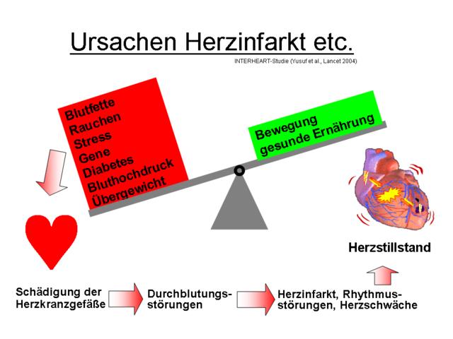 Risikofaktoren des Herzinfarktes