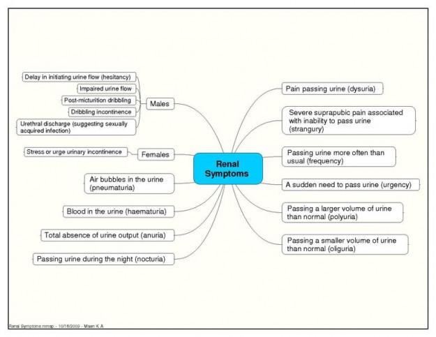 Renale Symptome Nierenversagen