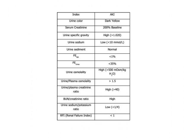 akutes Nierenversagen diagnostizieren