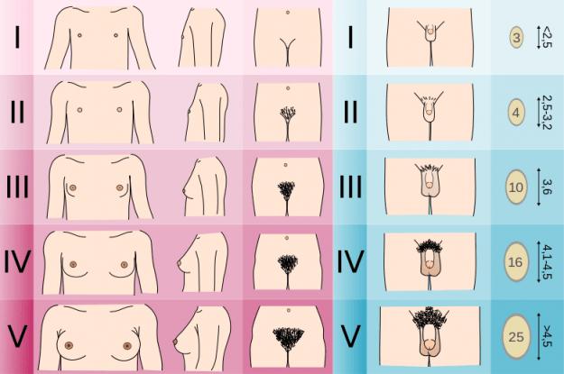 sex no 1 masturbace divek