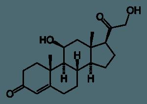 Corticosteron-Molekül