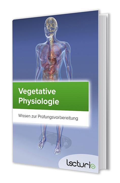 Vegetative Physiologie kompakt – Kostenloses eBook   Lecturio