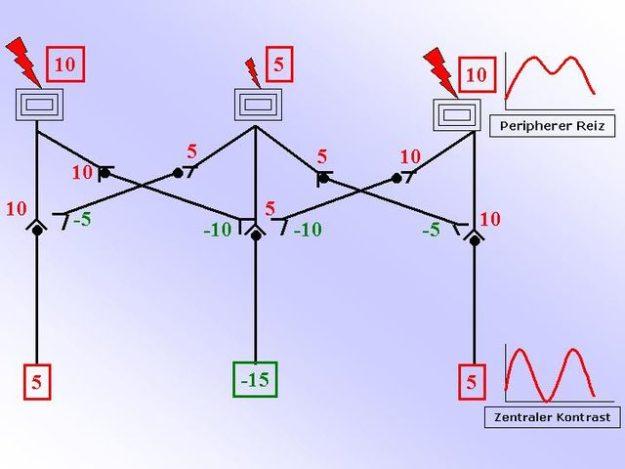 vereinfachtes Verschaltungsprinzip der lateralen Hemmung